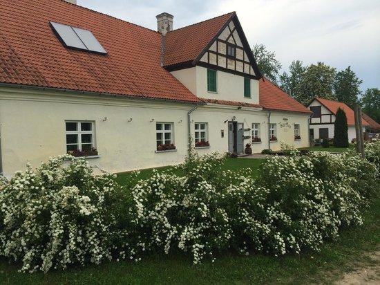 Balta Maja Guesthouse