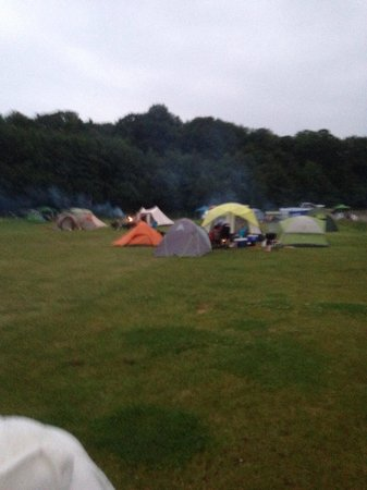 Whitlingham Broad Campsite: Whitlingham country camping