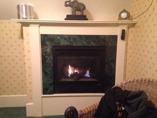 Darby Field Inn: Fireplace