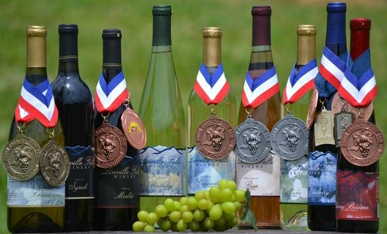 Newland, Carolina do Norte: Linville Falls Winery-Nine Wines