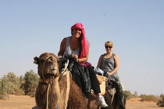 Morocco Excursions: recorrido en camello