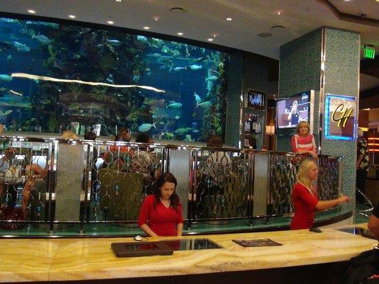 Golden Nugget Hotel: Accueil avec un joli aquarium