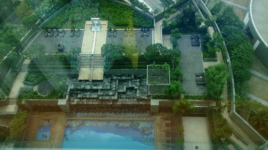 Novotel Citygate Hong Kong: view down to impressively landscaped pool