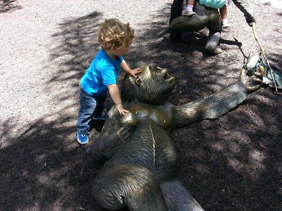 San Diego Zoo: So fun