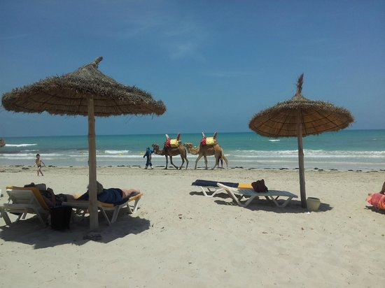 Isis Hotel Thalasso and Spa: plage et ..... :-D