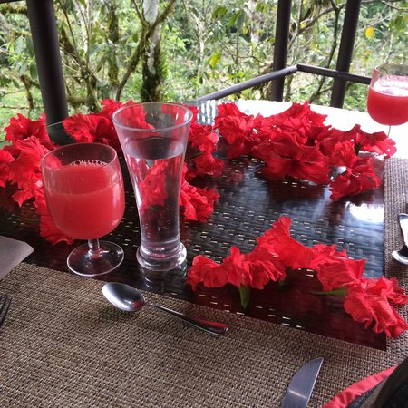Pacuare Lodge: Dinning in the Nest.