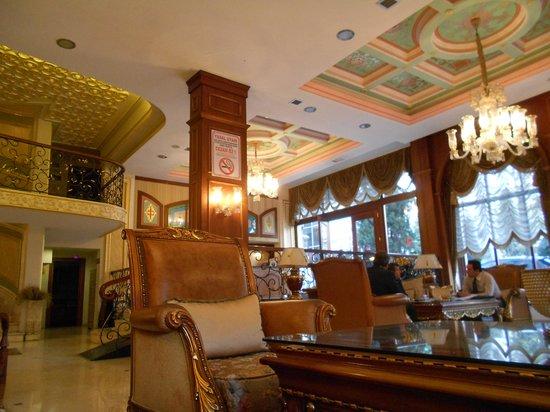 Deluxe Golden Horn Sultanahmet Hotel : Hotel Lobby