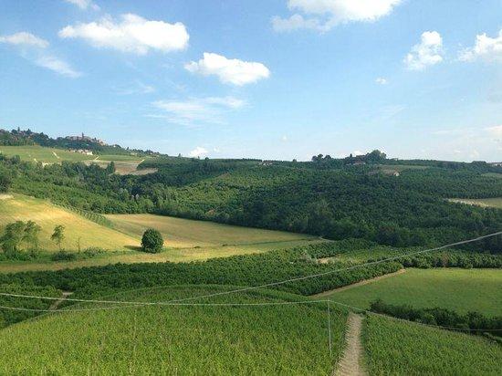 Alla Cascina Baresane : Panorama