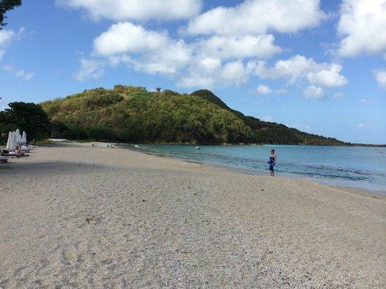 Hermitage Bay : Spiaggia