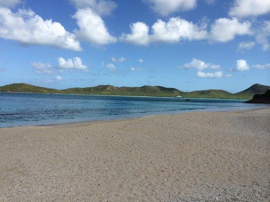 Hermitage Bay : Beach