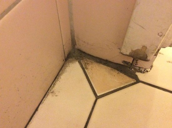 Scandic Sergel Plaza: One thing is a tired hotel. This one is filthy!