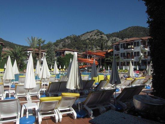 Alize Hotel : бассейн