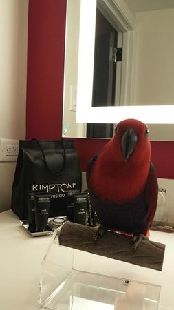 The Kimpton Brice Hotel: Ruby Approved