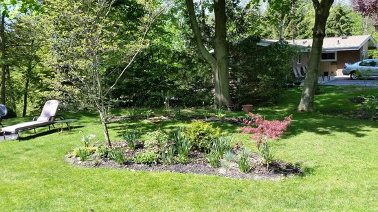 Dover House Bed and Breakfast: Garden