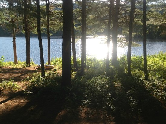 Maine Lakeside Cabins : View from my cabin
