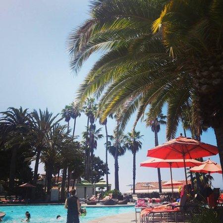 Hilton San Diego Resort & Spa: Gorgeous pool area