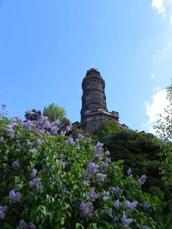 Nelson Monument: Монумент Нельсона снизу