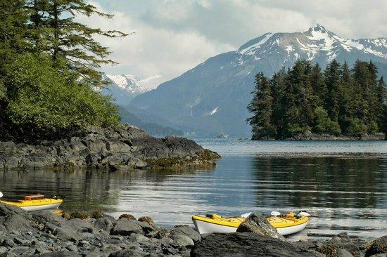Sitka Sound Ocean Adventures: Kayaking