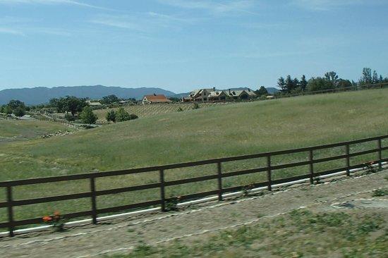 Stagecoach Wine Tours Santa Ynez: Countryside as we cruise along