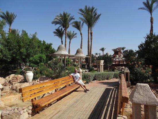 Radisson Blu Resort, Sharm El Sheikh: Radisson Blu Sharm 7