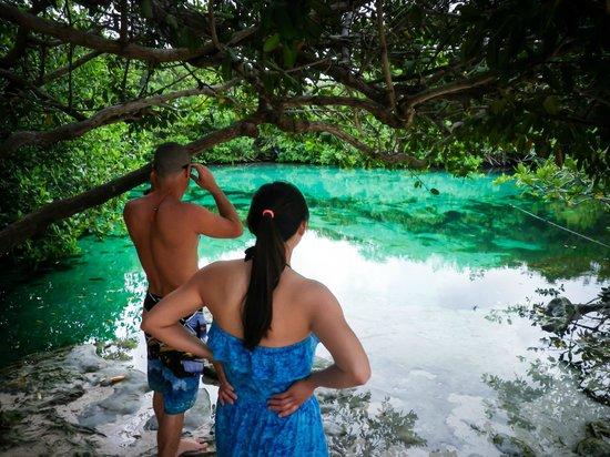 Diving Cenotes Tulum : casa cenote