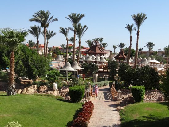 Parrotel Beach Resort: Radisson Blu Sharm 6