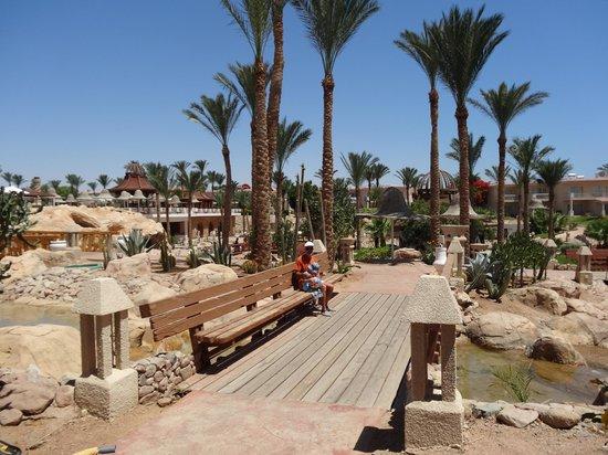 Parrotel Beach Resort: Radisson Blu Sharm 9