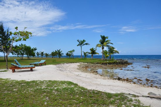 Hatchet Caye Resort: Room View #7