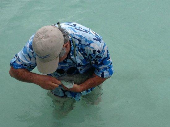 Hatchet Caye Resort: From the dock