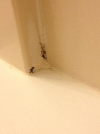 Four Points by Sheraton Portland East: Hmmm...What IS this black stuff on the caulking around the tub/shower?