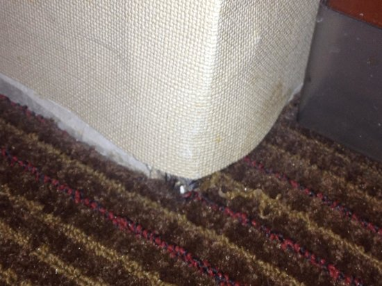 Four Points by Sheraton Portland East: Water damage and  no baseboards where wall meets carpet.
