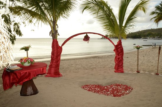 East Winds Inn: coconut trees decorated