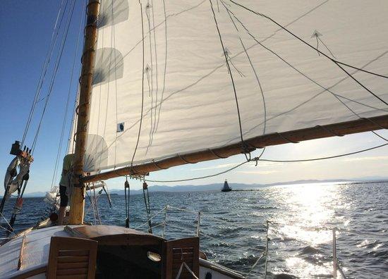 Whistling Man Schooner Company: Sunset sail