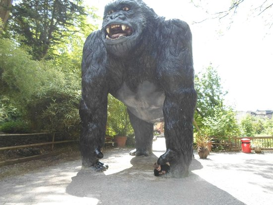 Wookey Hole Caves : King Kong at Wookey Hole