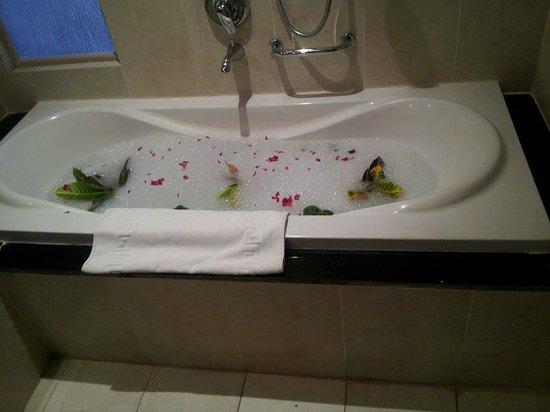 Radisson Blu Hotel, Alexandria : room