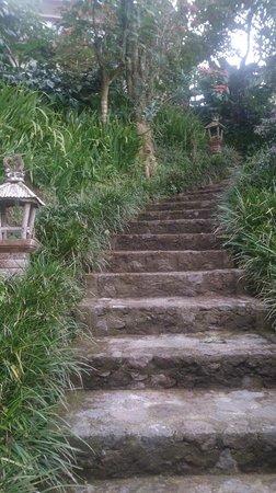 Munduk Moding Plantation : lots of stairs around the property