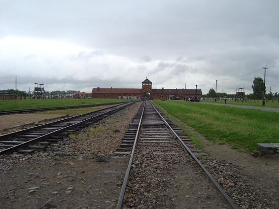 BEST WESTERN Krakow Old Town: Birkenau concentration camp