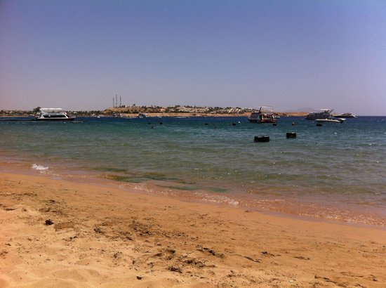 Falcon Naama Star : View from the beach