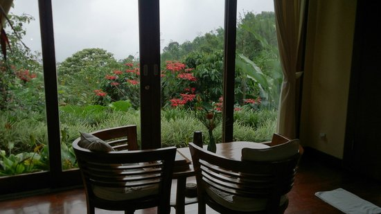 Munduk Moding Plantation: view from villa #3