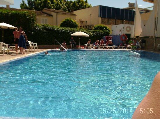 Hotel Piscis : Pool