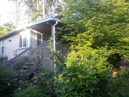 Birch Bay Get Away : back upper cabin - private cosy