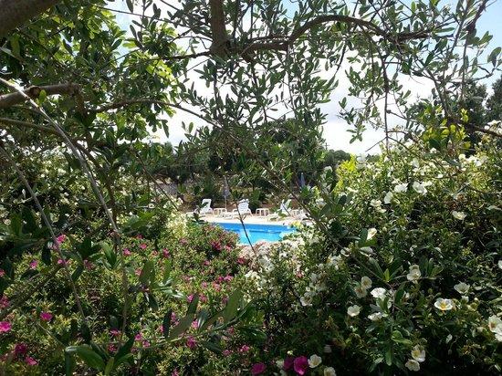 Trullo Sovrano Exclusive B&B: La piscina