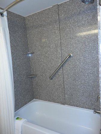 Holiday Inn Express & Suites Fort Payne : Bathroom  shower view