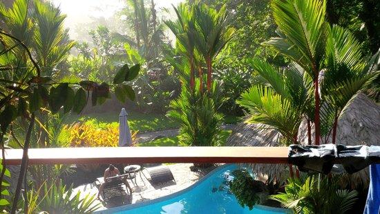 Hotel Banana Azul : Tucked into the Jungle