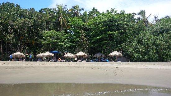Hotel Banana Azul : A quiet beach getaway