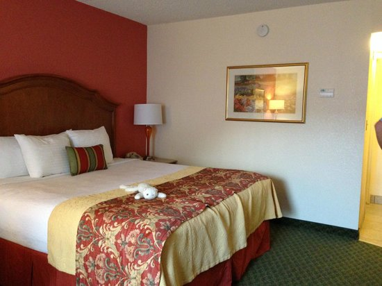 BEST WESTERN PLUS A Wayfarer's Inn and Suites: King room 114
