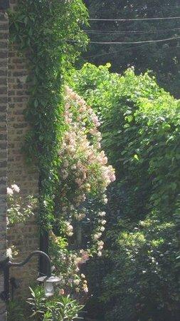 The Coach House: Climbing roses frame garden entrance