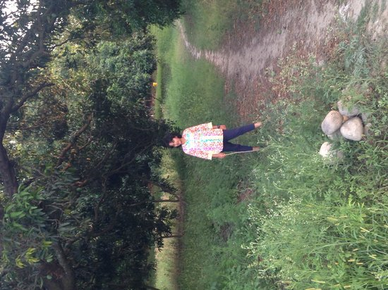 The Homestead at Corbett Country: Walking in the fruit orchards