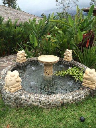 Nayara Resort Spa & Gardens: Lots of little pools