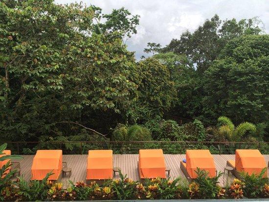 Nayara Resort Spa & Gardens: Grounds